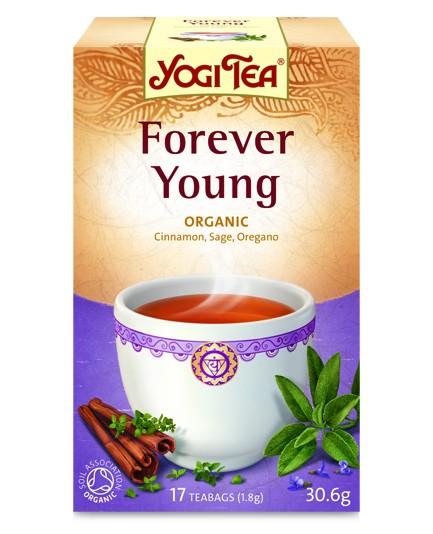 Herbata zielona równowaga bio 17t.