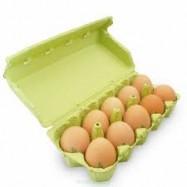 Jaja z wolnego wybiegu 10szt.