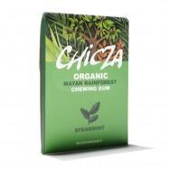 Biodegradowalna guma do żucia o smaku cynamonu 30g