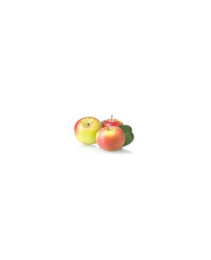 Grejpfruty czerwone świeże bio