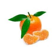 Mango świeże bio